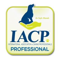 iacpm-professional-logo600x600-web